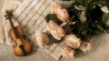 violin-2946996_1920
